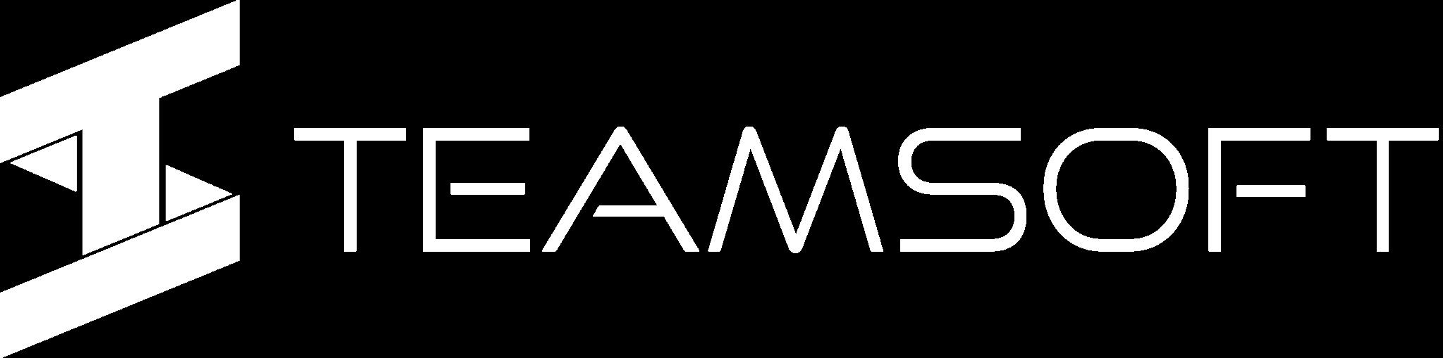 Team-Software Logo